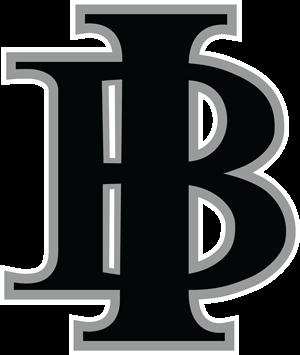Indiana-Bulls-Baseball-Logo