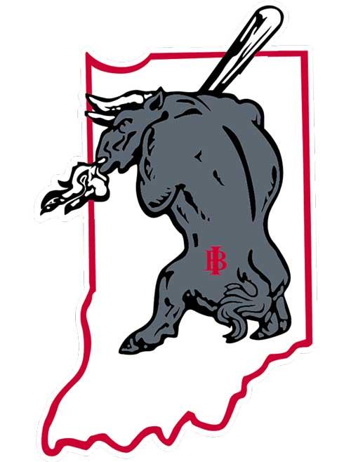 bull with logo